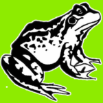 cropped-Toad.png